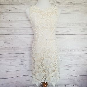 NWT Loft Cream Lace with Overlay Dress Size 0